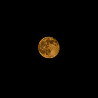 Strawberry or Honey Moon June 13, 2014